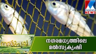 Fish farming can also do in limited arena  | Manorama News