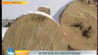 К эксперименту по борьбе с нелегальной вырубкой леса готовятся в Иркутской области(, 2017-01-25T05:25:16.000Z)