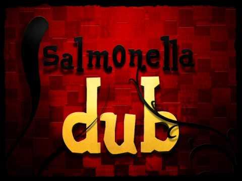 Salmonella Dub - Inside The Dub Plates