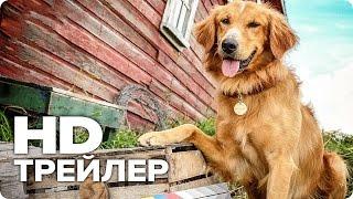 Собачья жизнь - Трейлер (Русский) 2017