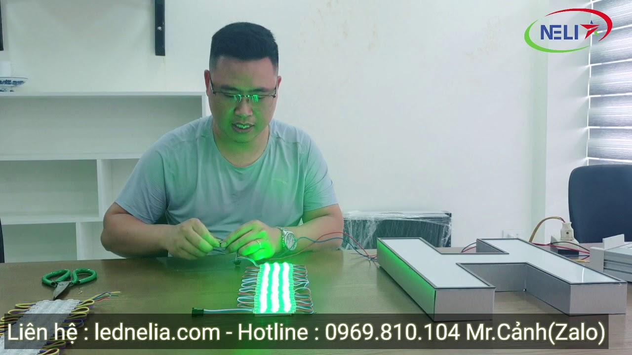 LED NELIA   Led hắt 3 bóng full color IC 8206 Nataya   Làm biển quảng cáo đẹp.