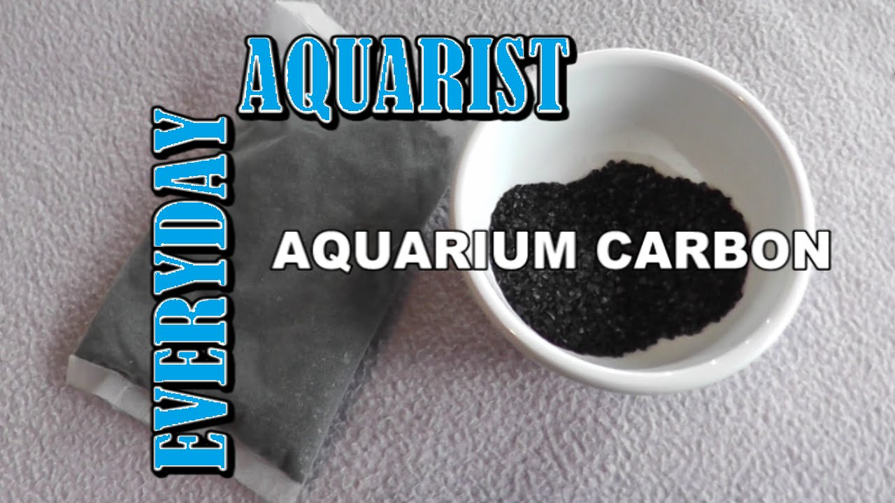 What is aquarium activated carbon youtube for Fish tank charcoal