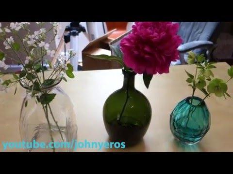 Casamotion Flower Vases REVIEW