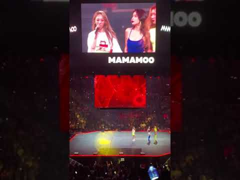 KCON LA 2019 MAMAMOO - gogobebe Fancam