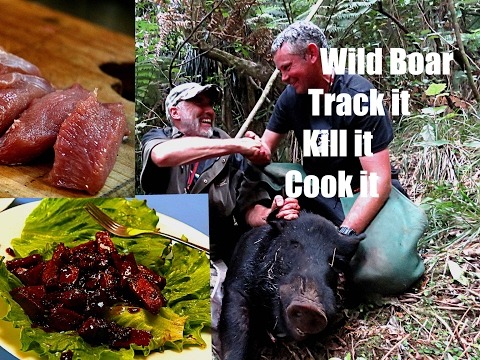 Wild boar - Track it  Kill it  Cook it.