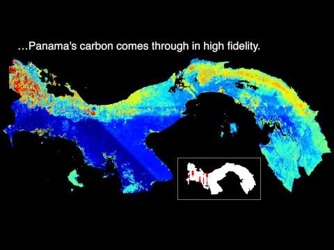 Panama's carbon in high fidelity
