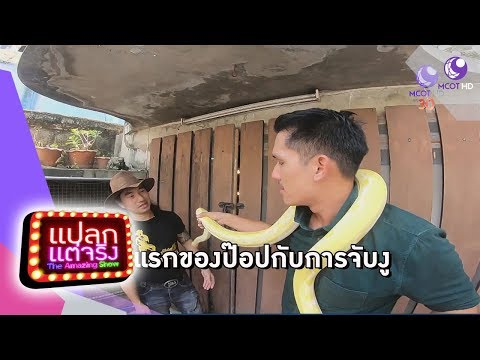 บ้านงูยิ้ม จ.สมุทรปราการ, มารีกีมาร์ จ.ลพบุรี - วันที่ 09 Jun 2018