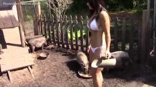 Farm Girl's micro teacup piglet and pigs compilation, beautiful woman and her farm animals