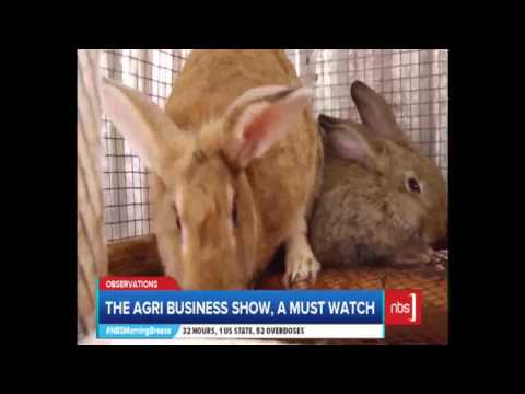 The Agri Business Show, A Must Watch