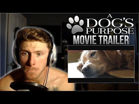 Vapor Reacts #42 | A Dog's Purpose Official Trailer #1 (2017) REACTION!! - I'M GOING TO CRY!