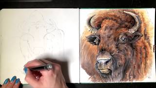 Скетч-Урок: Рисуем животное Зубр.