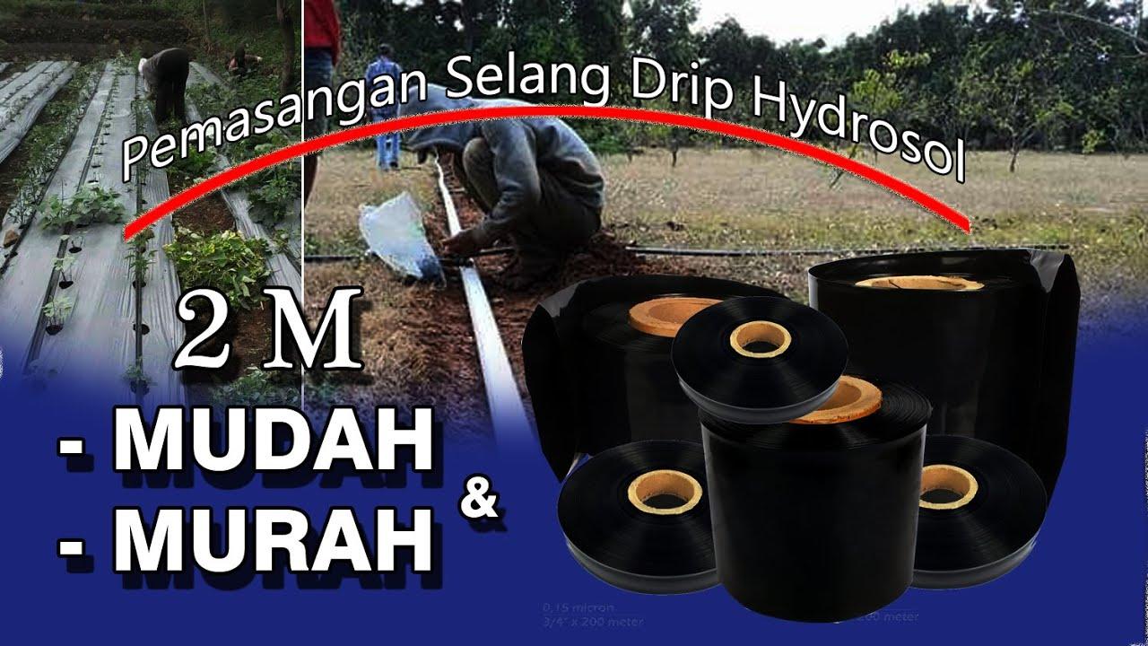 Pemasangan Selang Drip | Hydrosol | sumberplastik.co.id