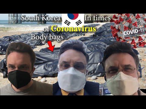 Journal of a coronavirus year in South Korea