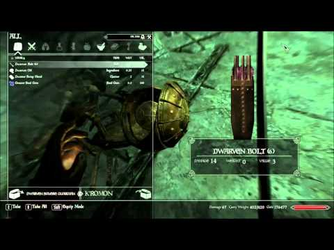 Skyrim Mod Review: Falskaar Part 26: Captain Platearms And The Heart Chamber
