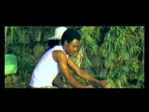 WINE and Reminiscence :Classical by Alemayehu Tibebu