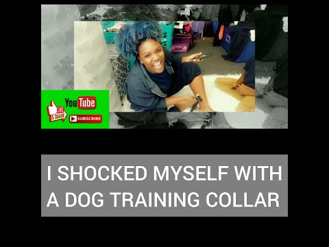 DOG CARE TRAINING COLLAR AMAZON REVIEW | SHOCK MYSELF ON LEVEL 20 😭😭| PART 1