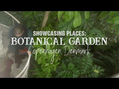 Inside the Botanical Garden - Copenhagen, Denmark