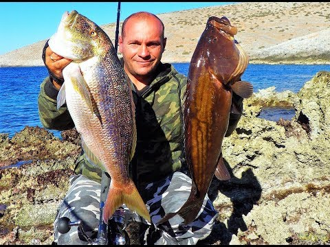 shore-jigging:-get-the-fish-without-snags.-feat-zenaq-muthos-accura-100h