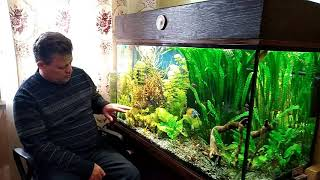 Мои ленивые аквариумы  Как я до такого  докатился