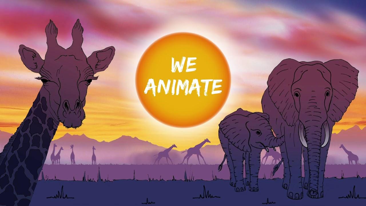 316tn interactive animiert Ihre Kampagnen