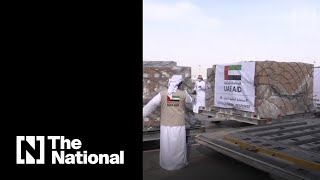 The UAE sends aid to Palestinians