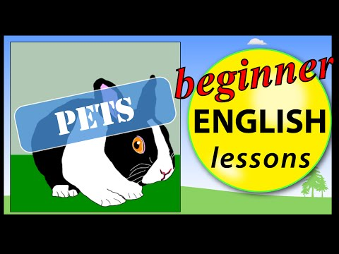 Pet animals in English | Beginner English Lessons for Children