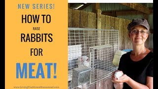 How To Raise Rabbits for Meat:  Series Introduction