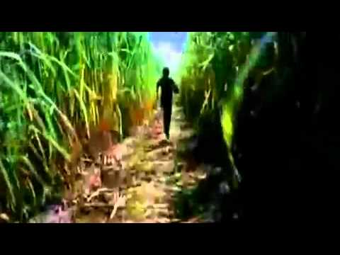 Help  Official Theatrical Trailer    Help  2010 New Movie   Ft  Bobby Deol  amp; Mugdha Godse www keepvid com