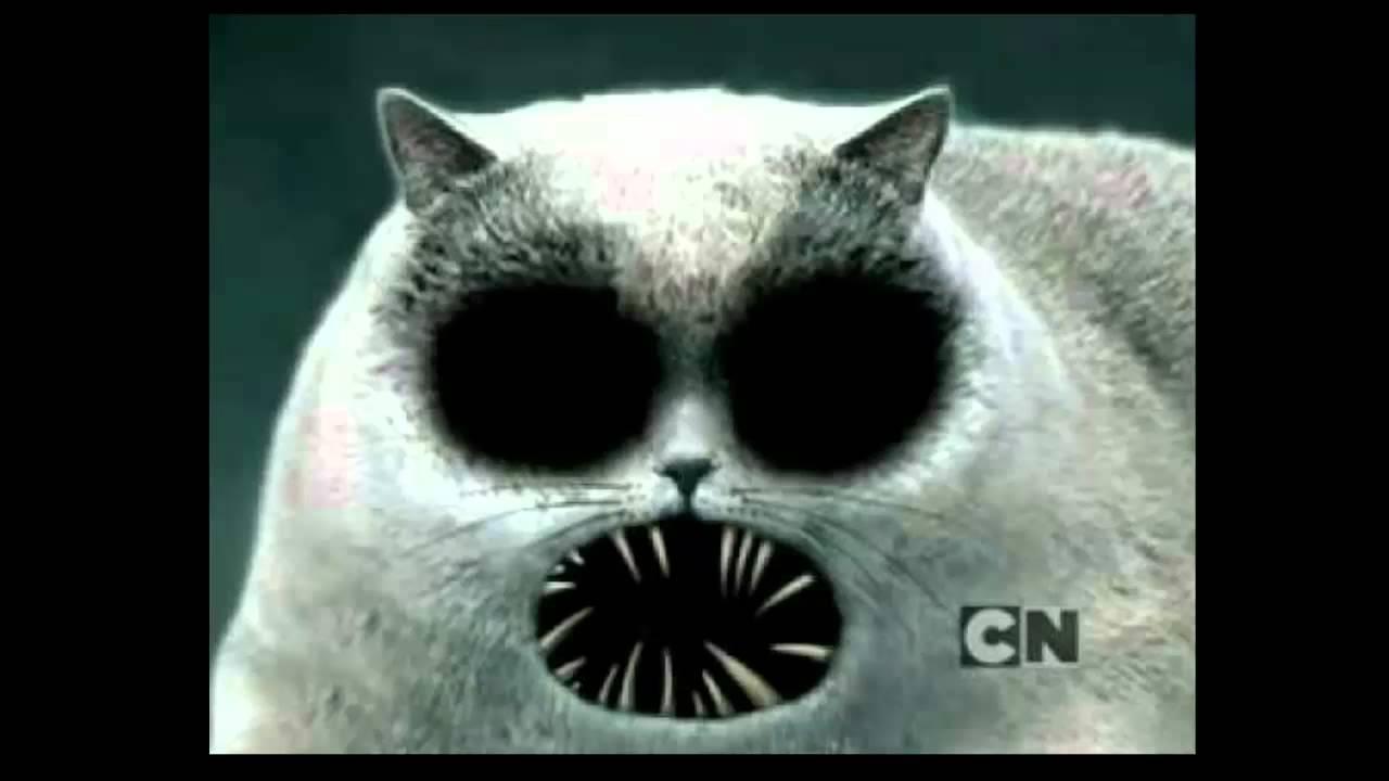 Creepy Cat Eyes