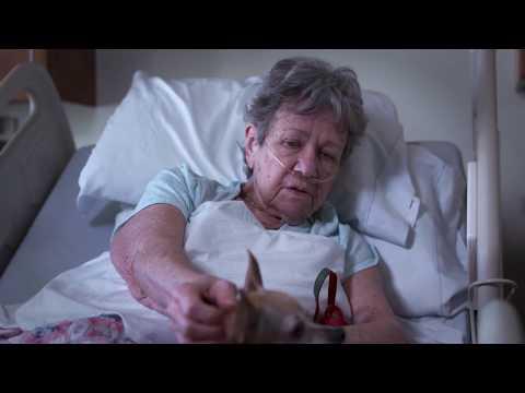 Hospice Buffalo Mary and Ralph C Wilson Jr Inpatient Unit