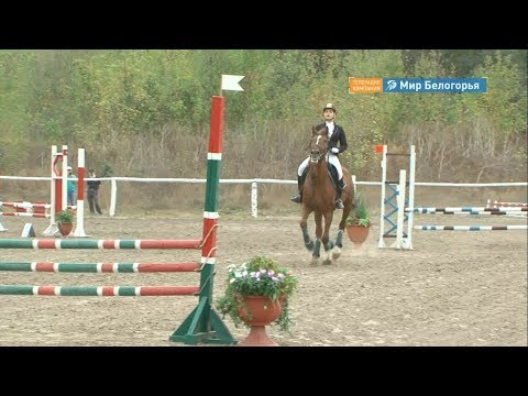 Соревнования по конкуру в Белгороде