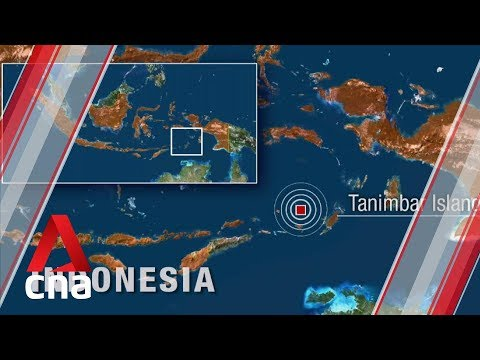 7.3-magnitude earthquake hits Indonesia's Tanimbar islands in Banda Sea