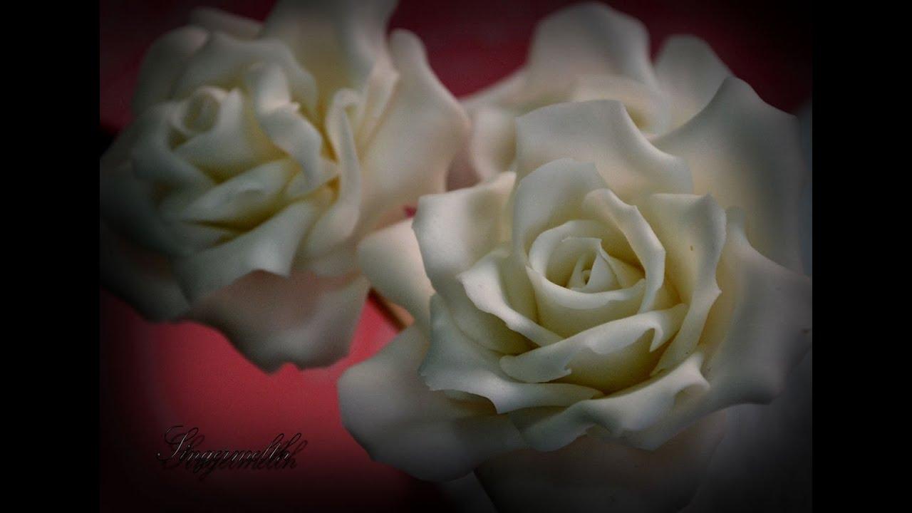 Come Conservare i Petali di Rosa: 6 Passaggi