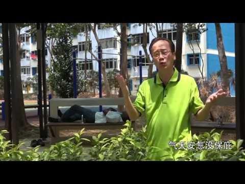 The Singing Politician - CPF Hokkien Song (Full Version)
