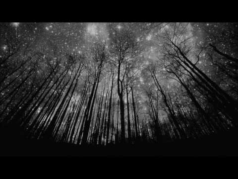 And Also The Trees  Under The Stars