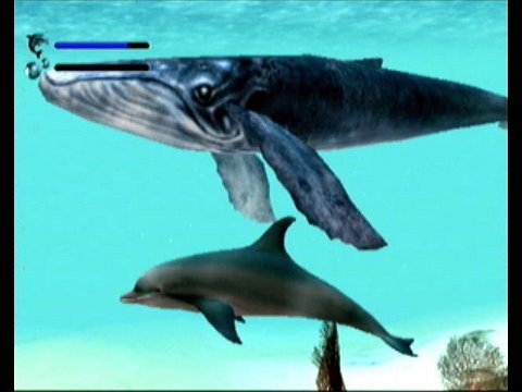 Vidéotest Ecco the Dolphin ( Dreamcast )