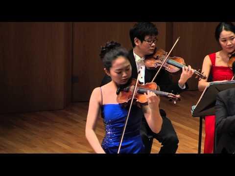 W  A  Mozart Violin Concerto No 5 A Major K 219