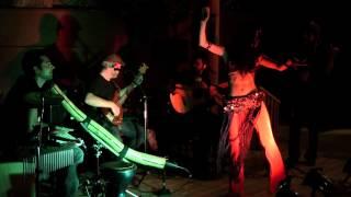 Maharajah Flamenco Trio - Darya