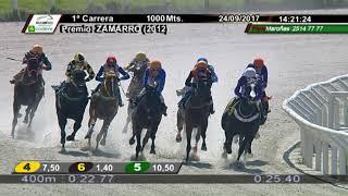 Vidéo de la course PMU PREMIO ZAMARRO