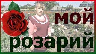 Мой розарий в цвету! Всё о розах. Уход за розами. Как выращивать розы.(Мой розарий в цвету! Всё о розах. Уход за розами. Как выращивать розы. Подписывайтесь на мой канал! Где будет..., 2016-06-08T16:23:12.000Z)