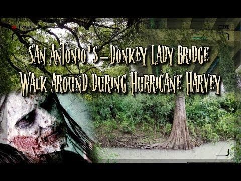 Walk around the Donkey Lady Bridge during Hurricane Harvey