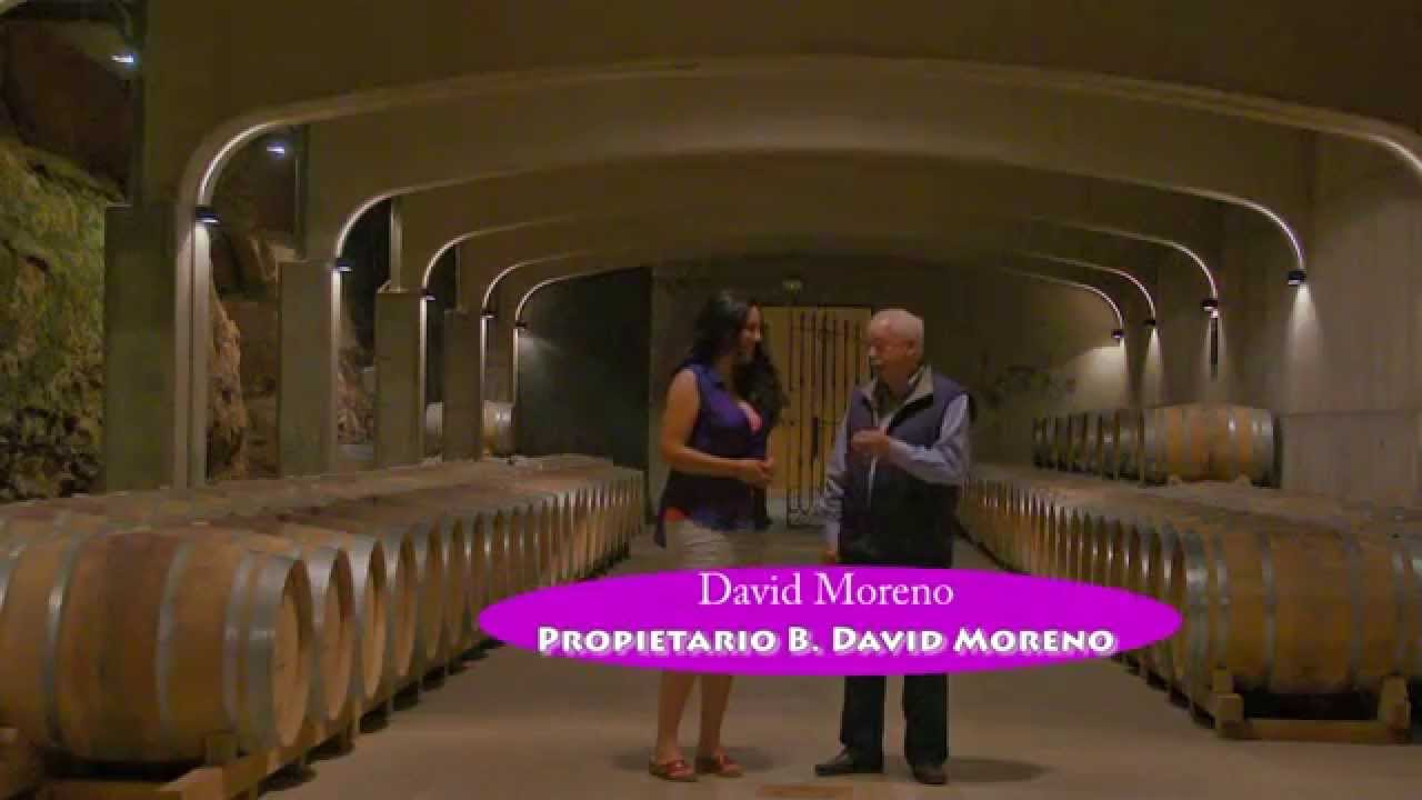 Bodegas David Moreno Youtube