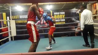 Boxing matchs pune