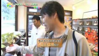 日本緑茶の発祥の地、宇治田原町を訪ねて