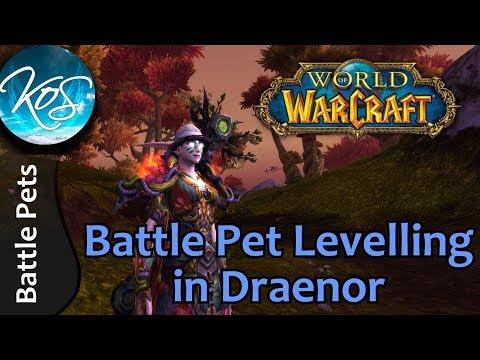 World Of Warcraft: BATTLE PET LEVELLING IN DRAENOR + TIPS & TRICKS! - WoW Battle Pet Strategy, WoD