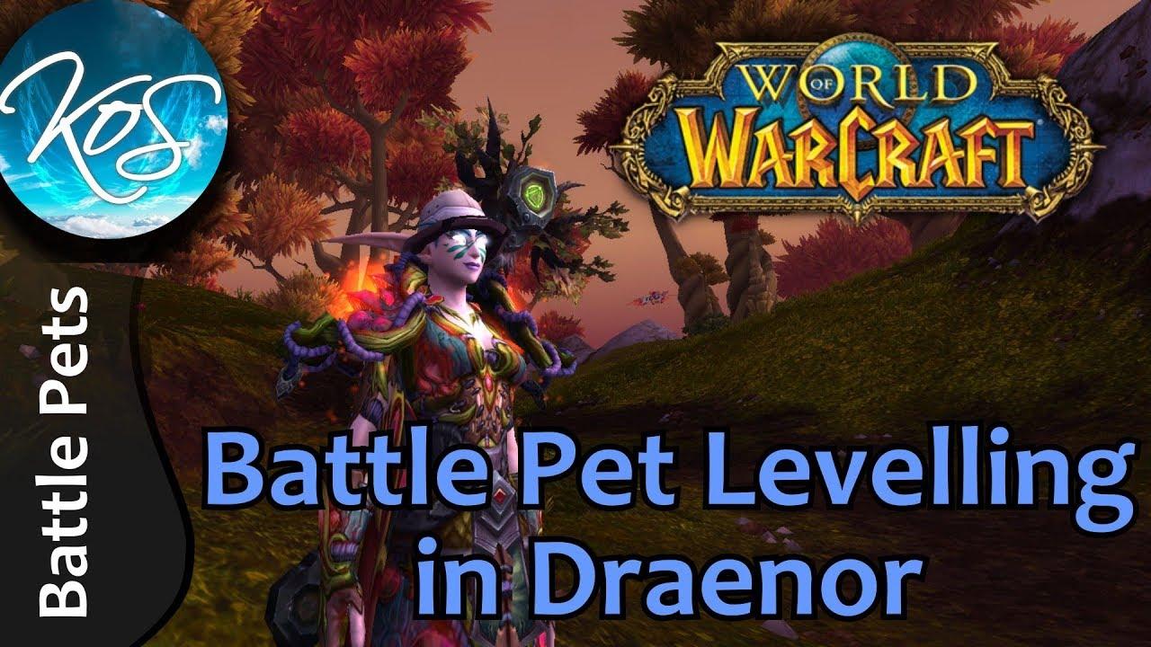 World Of Warcraft Battle Pet Levelling In Draenor Tips Tricks Wow Battle Pet Strategy Wod Youtube