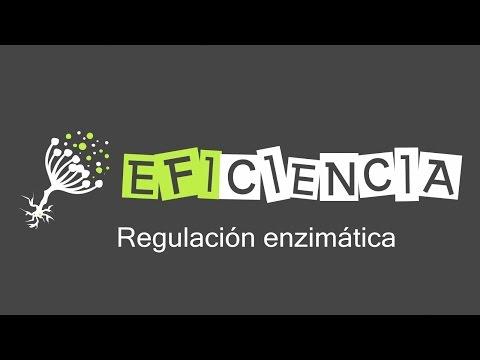 ENZIMAS. REGULACIÓN ENZIMÁTICA Activación Inhibición Alosterismo