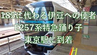 185に代わる伊豆への使者 E257系特急踊り子東京駅に到着