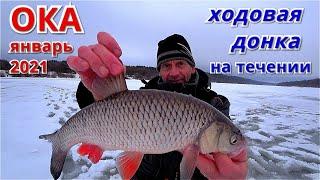 ХОДОВАЯ ДОНКА НА ТЕЧЕНИИ Рыбалка на ОКЕ в январе 2021