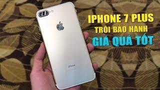 Mua ngay iPhone 7 Plus trôi bảo hành vì giá nó đã quá tốt